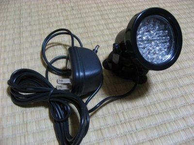 light30.jpg